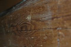 Trattamento anti tarlo Kaptura, tassello inserito