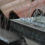 Sistema ad aghi per allontanamento volatili