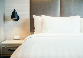 Cimici del letto